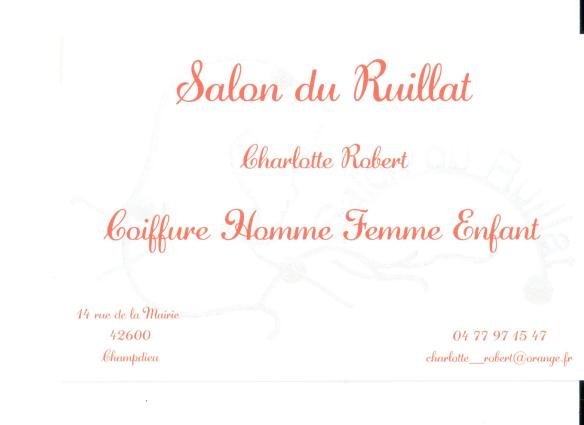 salon ruillat